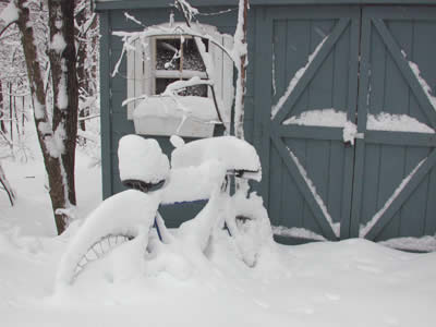 A bike parked in front of a small tool shed, all covered with snow.
